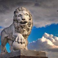 Улыбка елагинского льва :: Лариса Шамбраева