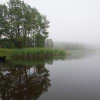 туманное утро :: Злата Красовская