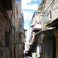 Улочки Палестины. :: Танюша Коc