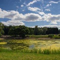 Пейзаж :: Сергей Филимончук