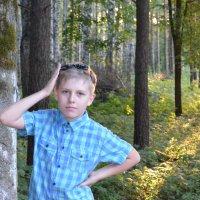 в лесу :: Timoshka Тимошенко