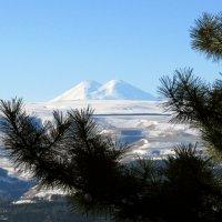 Вид на Эльбрус с дорожки кисловодского теренкура :: Kristallos (Наталья)