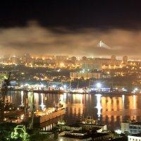 Владивосток, Золотой Рог :: Andrey Gerasimov