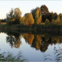 Зеркальное отражение. :: Антонина Гугаева