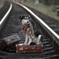 Поезд ушёл :: Сергей