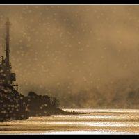 Амур, туман, мотыльки :: Alexander Antonov