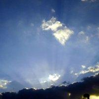 Солнечные лучи. :: Валерьян