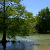Озеро Mariotti :: Оксана Крючкова