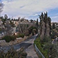 Иерусалим в полдень. :: Алла Шапошникова