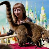 Цирковые звери :: Виктор