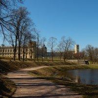 Гатчинский парк весной :: Валентина Папилова
