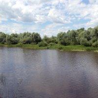 Река Солотча (панорама) :: Александр Буянов