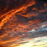 Прекрасное вечернее небо :: Варвара Шонгина