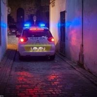 Местная полиция блистает :: Дмитрий Садов