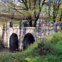 Живописный мостик. :: Лия ☼