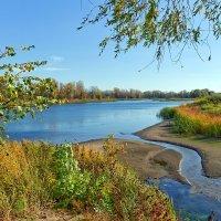 Осень на берегах реки Большой Иргиз. :: Анатолий