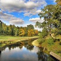 Осенний пейзаж :: Елена Румянцева