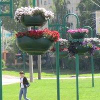 город западная двина, день города, 5 июля 2014, россия :: Владимир Павлов