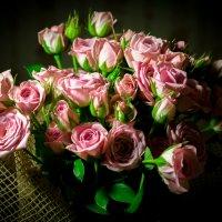 розы :: Мария Немцова