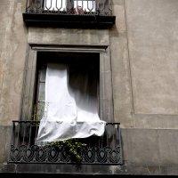 окно :: Тамара Бердыева