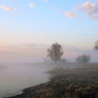 Туман над тихой рекой :: Сергей Михайлович