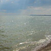 Таганрогский залив.Июнь 2014г. :: Ирина Прохорченко