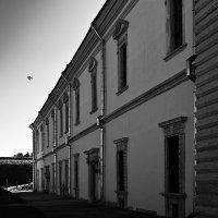 Дворец и птица. :: Андрий Майковский