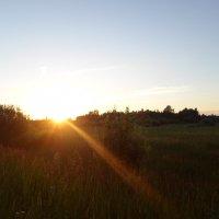 Закатный солнца луч :: BoxerMak Mak