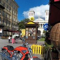 ,,Harley Davidson,, c Heвского проспекта. :: Жанна Викторовна