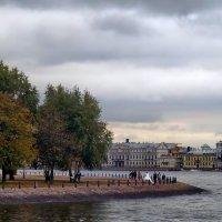 На берегах Невы :: Liliya Kharlamova