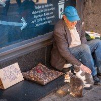 Бездомный в Мадриде :: Дмитрий Садов