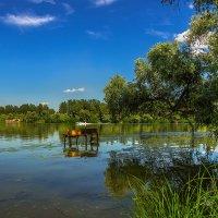 Одним летним днем :: Denis Aksenov