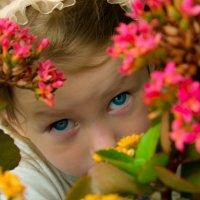 Цветочек в цветах. :: Инта