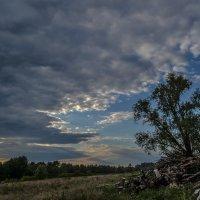 Небо :: Дмитрий