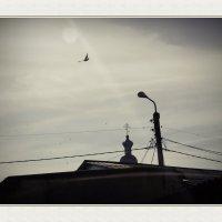 Курская область. Обоянь. Крыши и небо. :: Александр