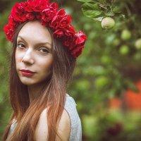 розы :: Светлана Лана Левохина