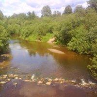 Вид на реку с мосточка :: BoxerMak Mak