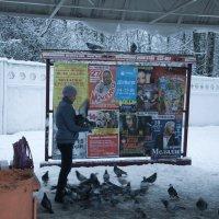 мальчик и голуби :: Александр Малюгин