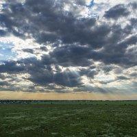 спряталось солнце за тучи :: Алексей -