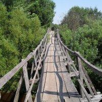 Мост через речку :: BoxerMak Mak