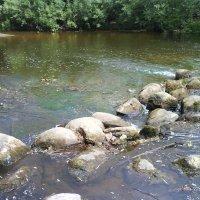 Порожек на реке :: BoxerMak Mak