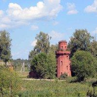 Стриж над старой башней :: Анатолий Антонов