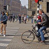 Прогулки по Амстердаму :: Лидия Цапко