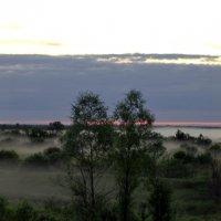 Туман :: Андрей Леднев