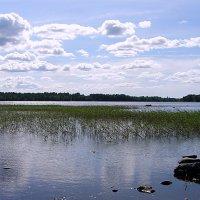 Мелеющее озеро :: Nick Nichols
