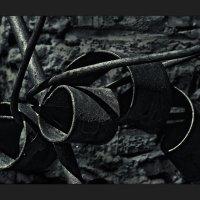 Железо :: Nn semonov_nn