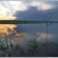 Закат на пруду :: Мила Раменская (Забота)