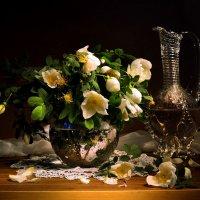 Белый шиповник... :: Валентина Колова