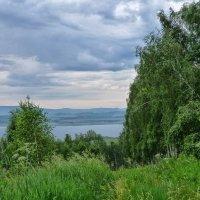 Облачно над лесом :: Serz Stepanov