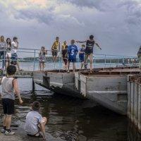 Новая забава... ветром к берегу надуло... :: Pavel Kravchenko